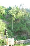 Dsc_0485