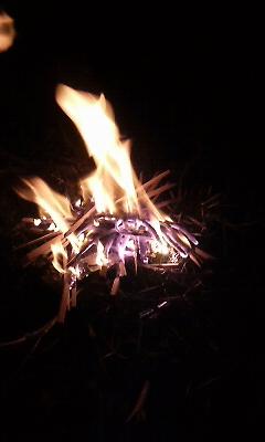 深夜の焚き火