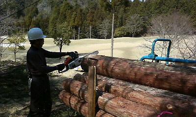 ゴルフ場で林業