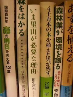 札幌の紀伊国屋書店