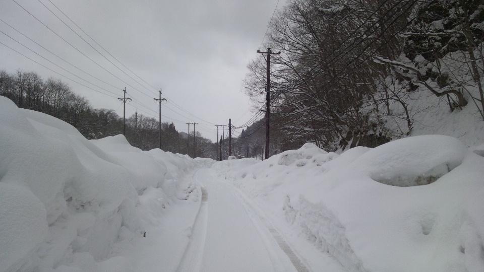 雪のセラピー