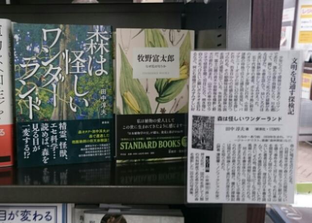 東京の書店で『森怪』